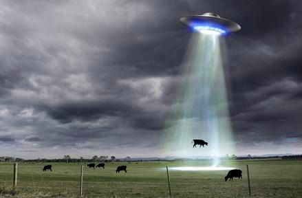 Risultati immagini per abductions, animals